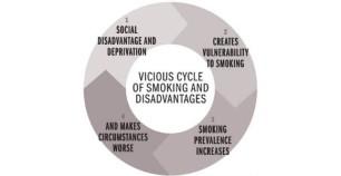 vicious-circle-wordpress
